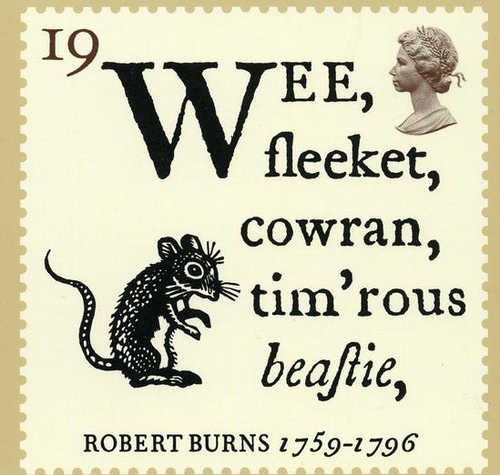 to a mouse On turning her up in her nest with the plough, november, 1785 wee, sleekit, cowrin, tim'rous beastie, o, what a panic's in thy breastie thou need na start awa sae.